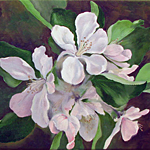 Apple Blossom Painting by Toni Ross