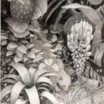 Strange Fruit - Graphite Drawing by Sarah B. Landry