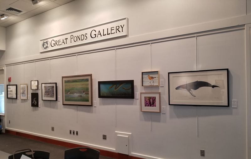 East wall of the Mass Migrations Exhibit