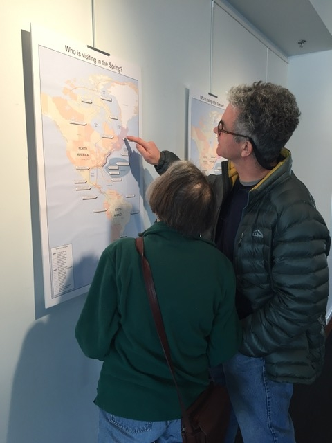 Migration map review by gallery visitors.