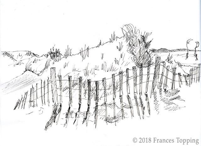 Sketch by Frances Topping of sand dunes on Cape Cod