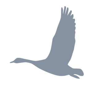 Outdoor Activity Icon | Goose Silouette