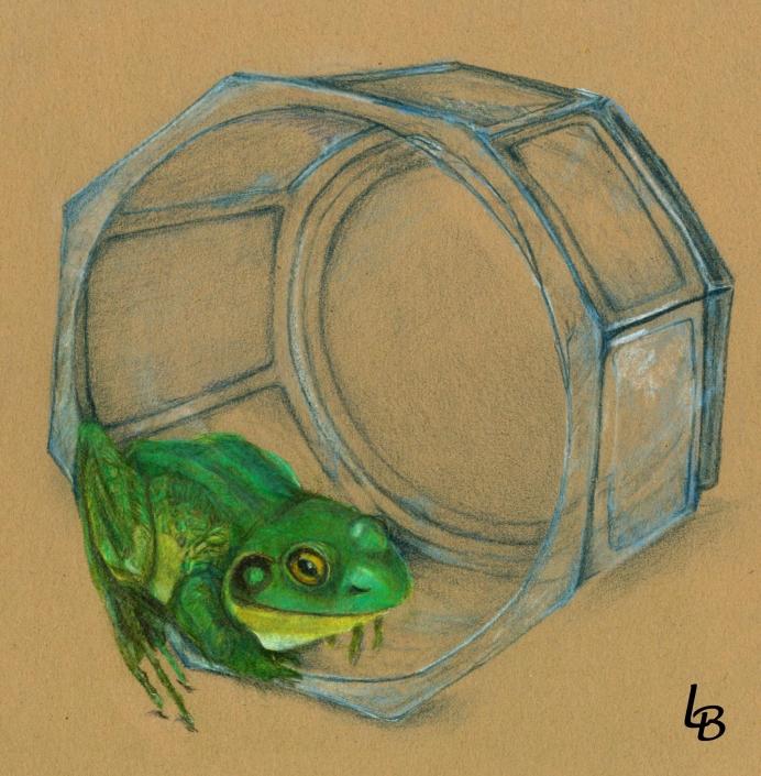 Frog Under Glass
