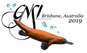 2019 GNSI Logo