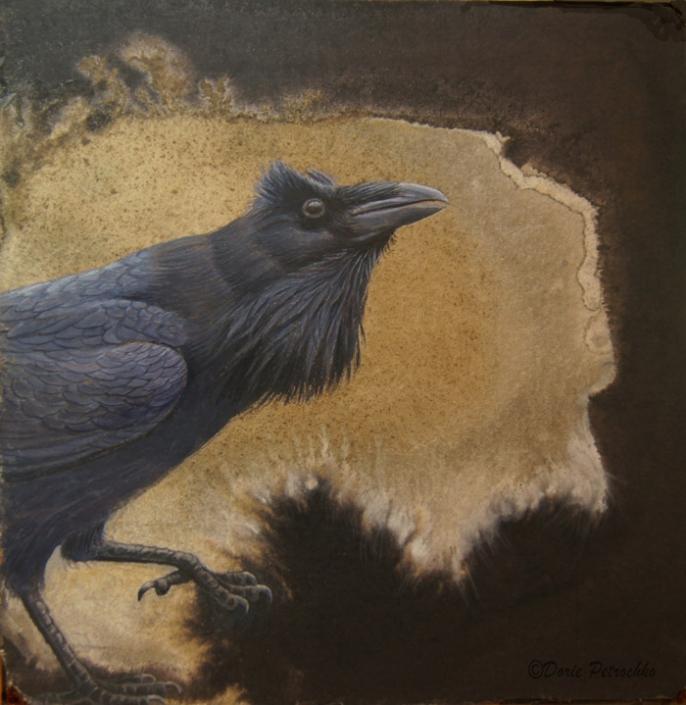 Korbi the Raven