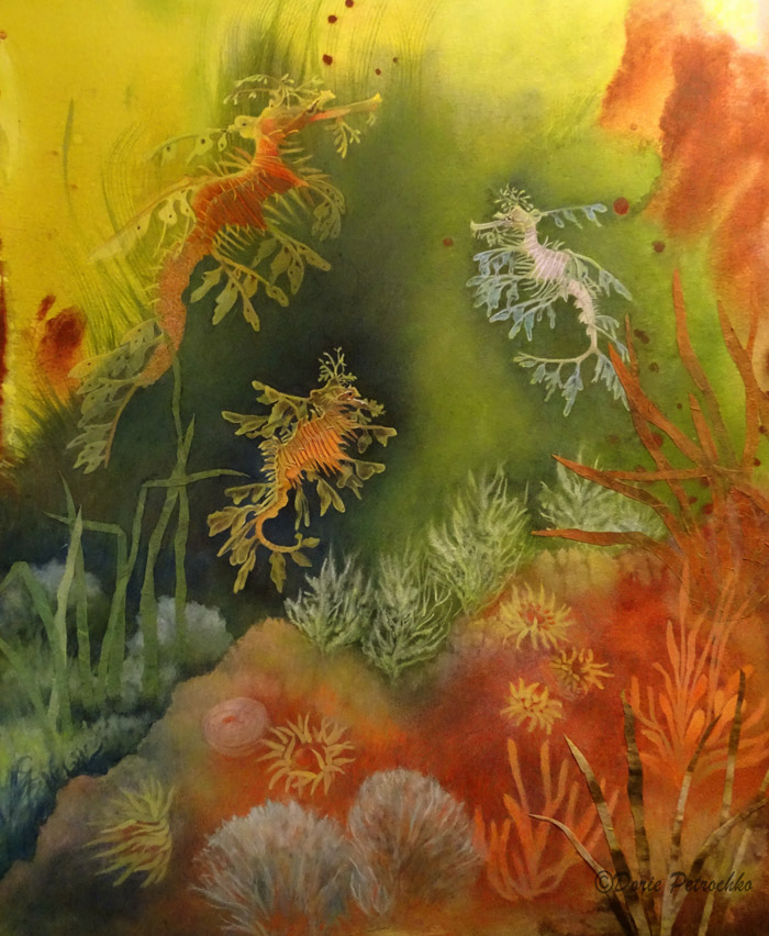 Leafy Sea Dragons