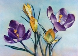 Crocus watercolor for Botanical Sunday by Mei Leung