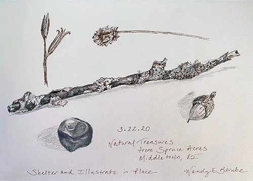 Natural Treasures sketches by Wendy Berube