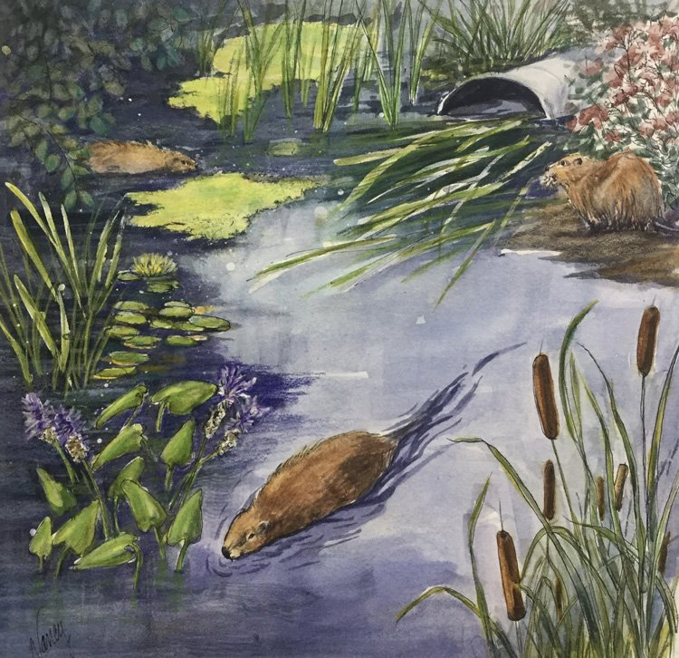 Rivers to the Sea exhibit entry by Nancy Minnigerode