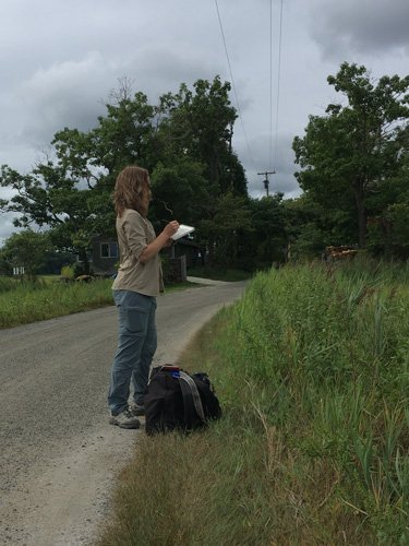 Wendy Chadbourne Field Sketching at Rough Meadows